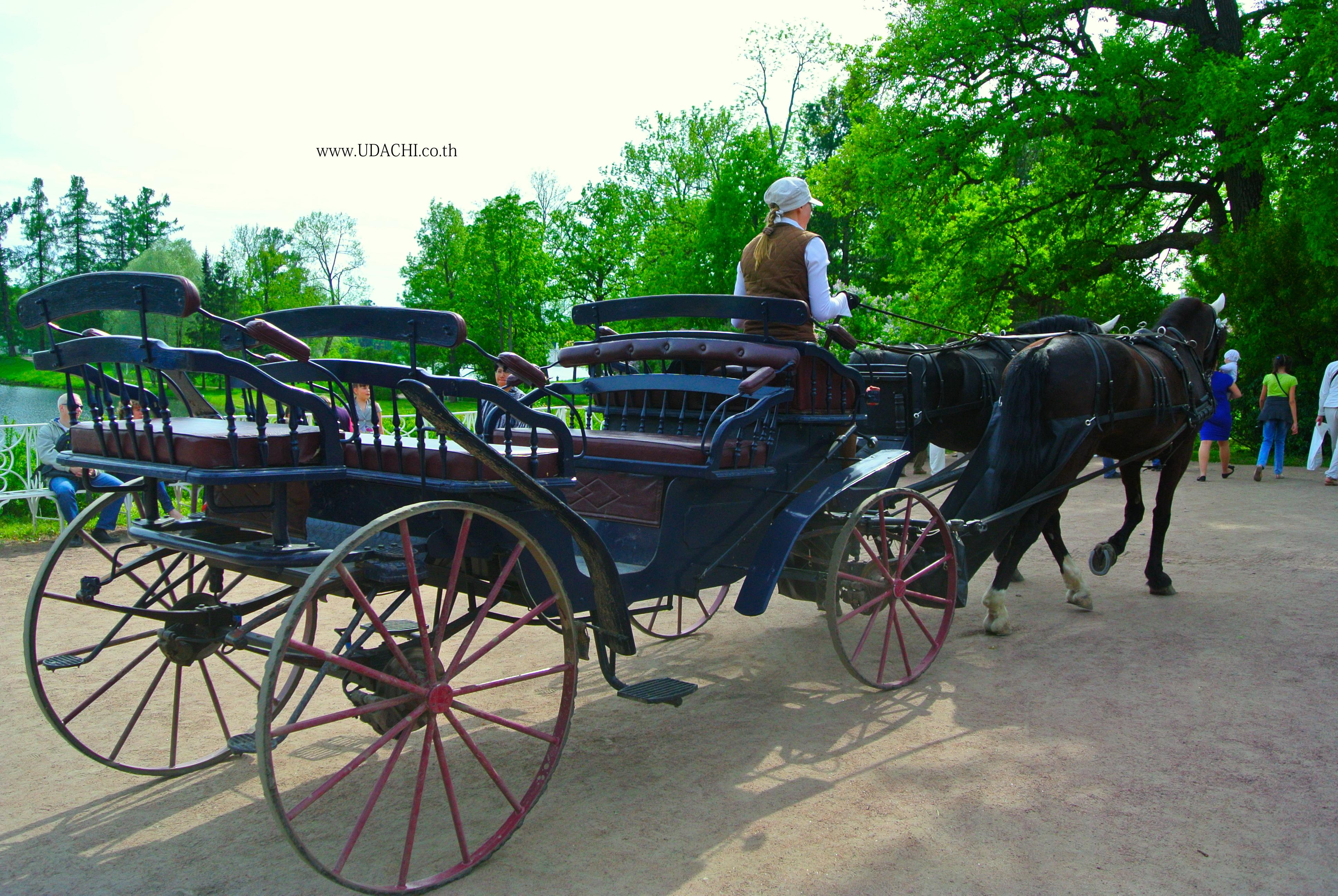 นั่งรถม้าชมสวนพระราชวังแคทเธอรีน